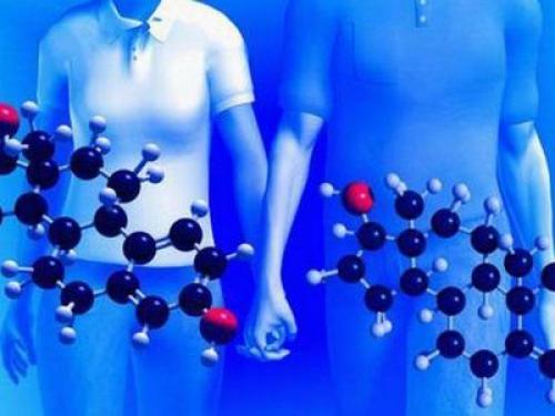 Химия и еда в жизни. Какую роль играет химия в жизни человека и зачем она нужна