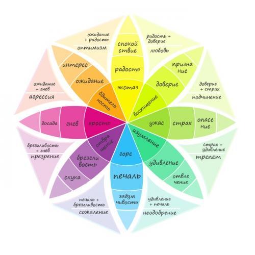 Колесо эмоций Роберта Плутчика, как им пользоваться. Колесо эмоций Роберта Плутчика