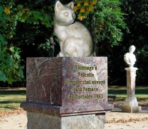 Фелисетт все о первой кошке в космосе. Кошка Фелисетт или первая кошка-космонавт