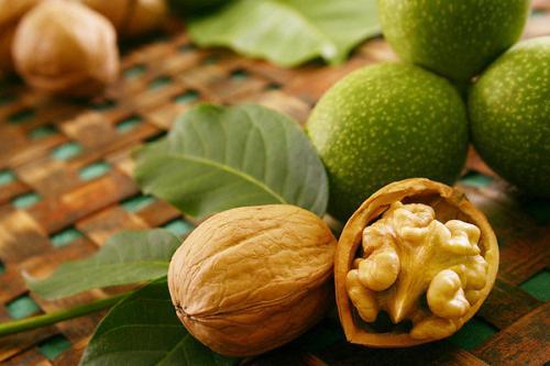 Самые полезные орехи для организма человека