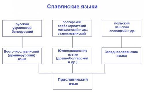 Старославянский язык. Праславянский, старославянский, древнерусский: как не запутаться в языках и терминах