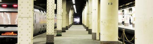 Расчлененная девушка Япония. Жуткая находка в токийском метро