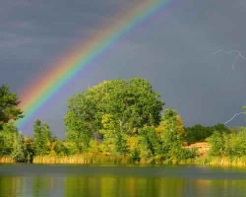 Радуга после дождя. Почему после дождя на небе появляется радуга?