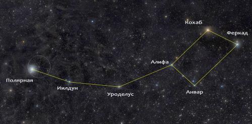 Как определить положение Полярной звезды на звездном небе. Особенности Полярной звезды и главные мифы