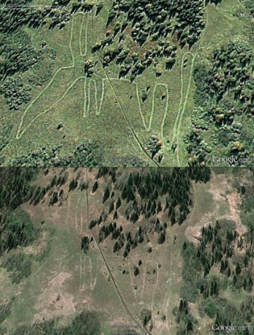 Что было 5000 лет назад на Урале. Уральскому лосю 5000 лет