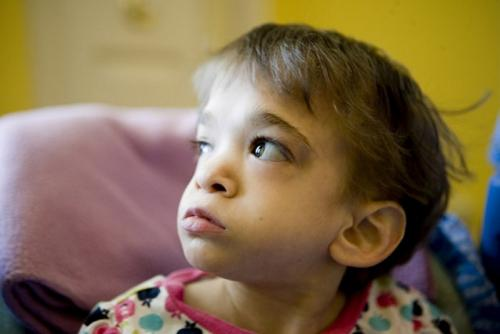 Диск бессмертия. 10 невероятных фактов о ДНК, которые будут интересны и взрослым, и детям (11 фото)