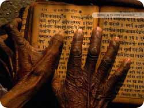 Советы мудрецов о жизни. Советы непальских мудрецов для долгой и здоровой жизни