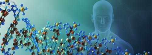 Интересные факты о днк/генетический код. Интересные факты о генетике, о которых вы даже не догадывались!