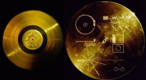 """Диск бессмертия"""". На международной космической станции есть жесткий диск под названием """"Диск Бессмертия""""."""