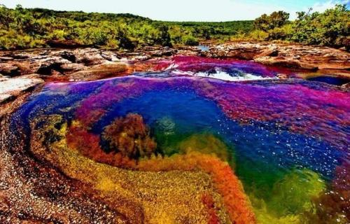 Самые необычные, удевительные явления природы - Страница 3 Bb879d9fd88f