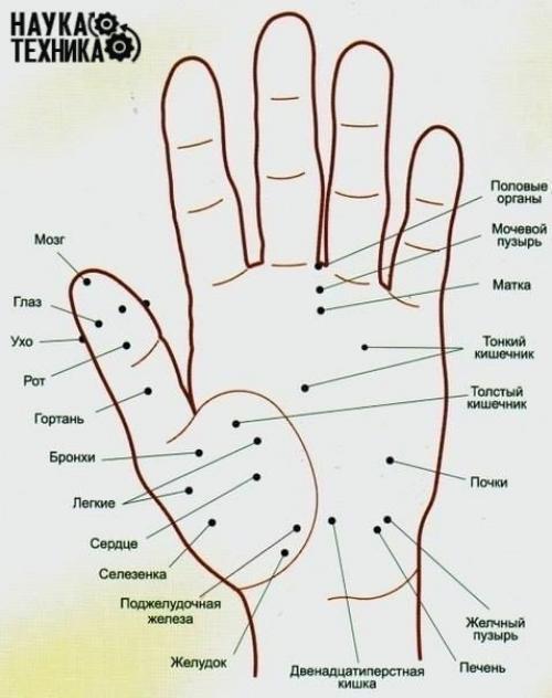 Точки энергии на теле человека. Волшебные точки на теле человека.