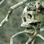 Найдены свидетельства самой древней битвы в человеческой истории.