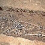 Славяне в каменном веке 25 тысяч лет назад носили дублёнки со стразами.