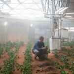 """Ученые урожай на\xA0""""марсианской"""" почве вырастили."""
