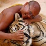 Способ тибетских лам без конфликтов жить.