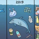 Количество пластика в мировом океане увеличилось в разы.