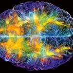 Эти 5 фактов о мозге изменят вашу жизнь (Re.