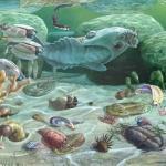 Нестыковки в эволюции: виды есть, а предков нет.