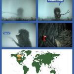 Ракетные комплексы начнут прятать в искусственном тумане.