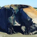 Неопознанный объект на берег в южной Каролине вымыло.