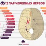 Великолепные инфографики от проекта Medless!