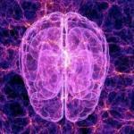 """""""Рождение разума.  Загадки нашего сознания""""."""