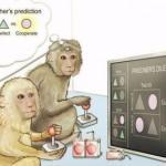 Открыты нейроны, помогающие предугадать будущее.