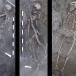 Археологи жертв португальской инквизиции в мусорной свалке нашли.
