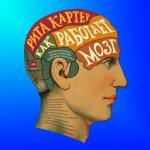 До недавнего времени мозг оставался последней терра инкогнита человеческого тела.